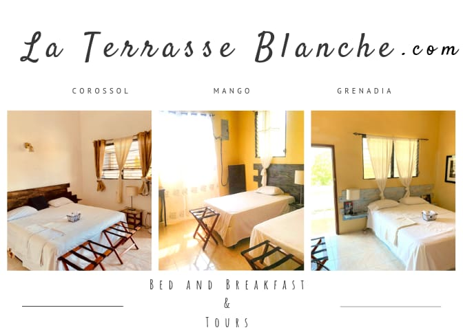 www.laterrasseblanche.com Bed and Breakfast - Personalized Tours Personnalisés