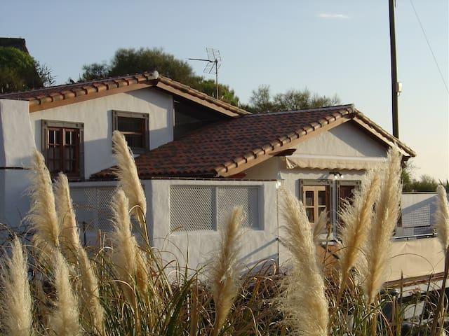 Finca Bodo - Santiago del Teide - Rumah