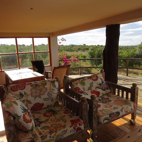 Franca's Bush Cottage - tranquil wilderness living