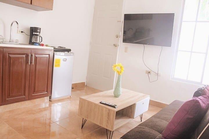 Cozy and quiet full apartment in Managua C