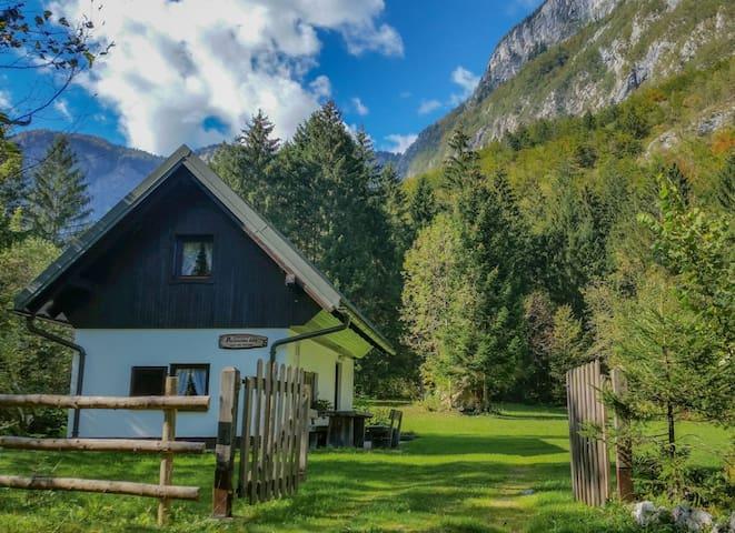 Chalet Bohinj Slovenia - Bohinj - Haus