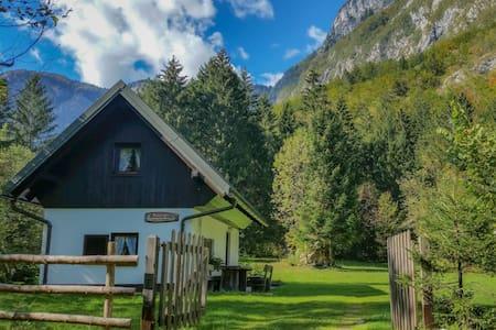 Chalet Bohinj Slovenia - Bohinj - Hus