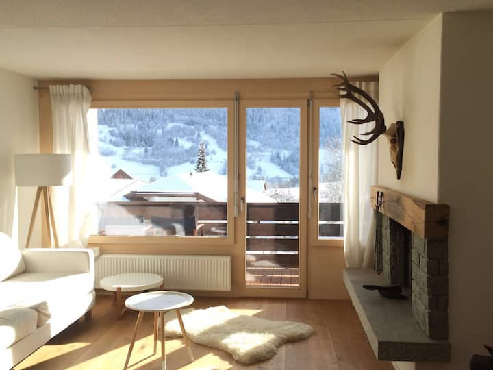 Newly renovated ski apartment