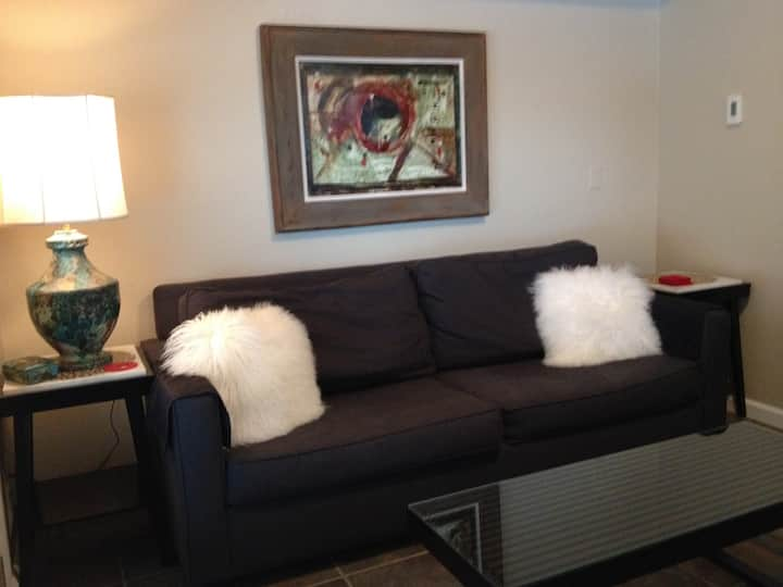 1 bedroom in town telluride condo/no cleaning fee