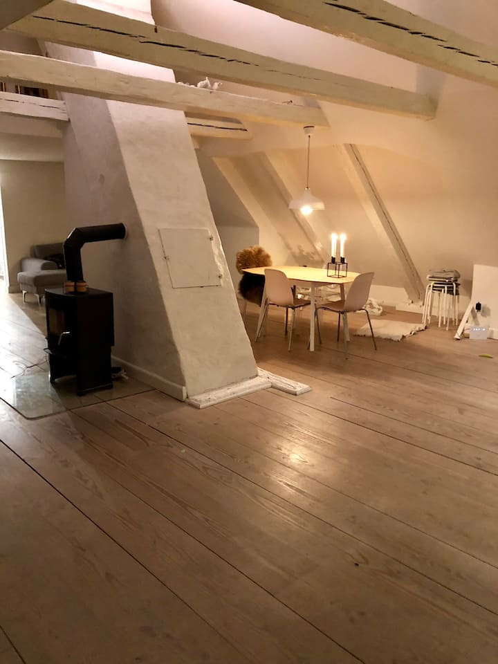 Cozy loft by the canal at popular Christianshavn