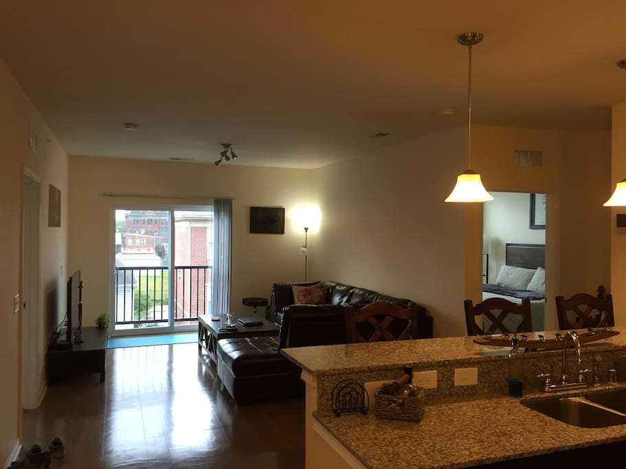 Entrance/Kitchen/Living Room Area