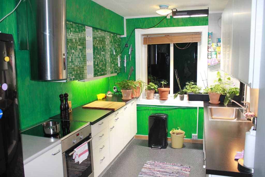Kitchen Green :-) garden