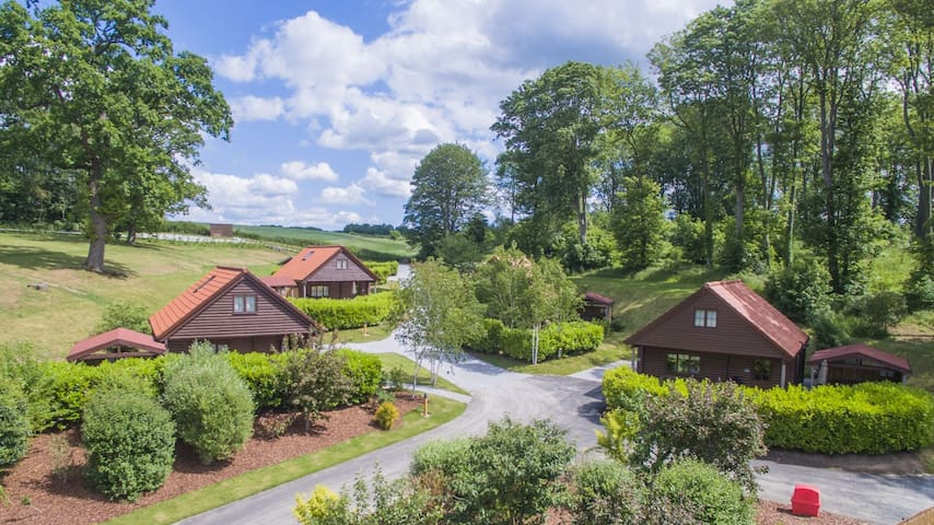 Buzzard Lodge | sleeps 4 - Hot Tub, Dog Friendly - 4* Gold Award