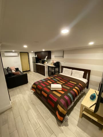 Living space with kitchenette and queen bed with TV
