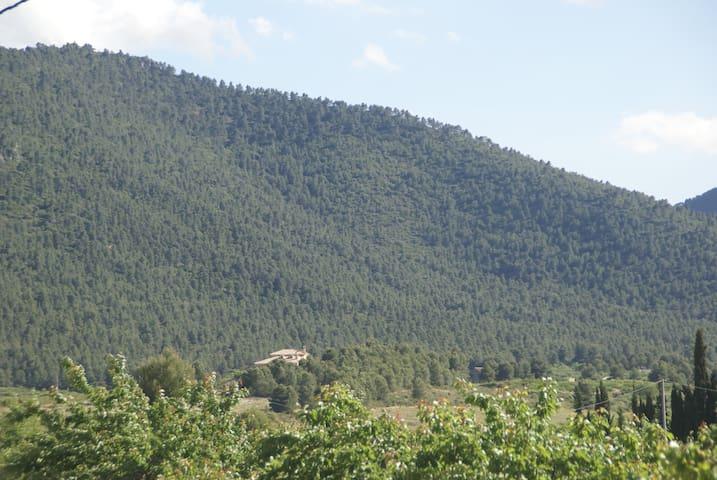 Casa rural Agrolavia - Bullas - Dağ Evi