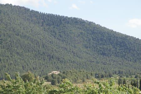 Casa rural Agrolavia - Bullas - Lomamökki