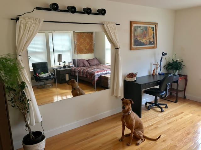 Spacious Room in Heart of Fishtown 1-2 People - Philadelphia - House