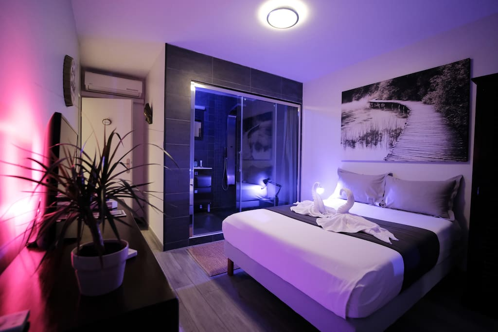 Room Private Bathroom Swimming Pool Shower Hdtv Apartments For Rent In Montpellier Occitanie