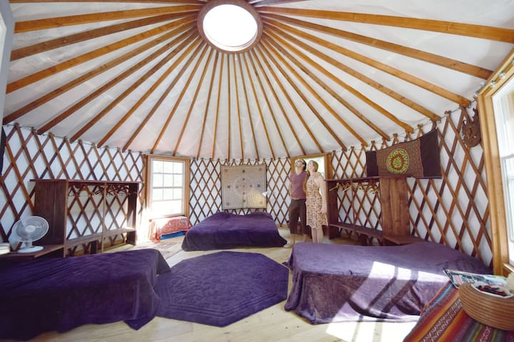 Eco-Chic Mountain Zen Yurt (Peru Shapibo)