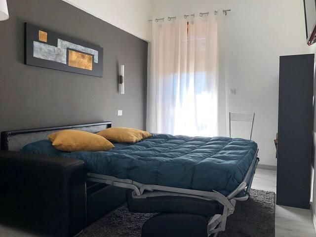 Camera da letto con divano letto, libreria, tv e climatizzatore.