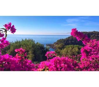 Maison 5pers vue mer & plage privée du domaine