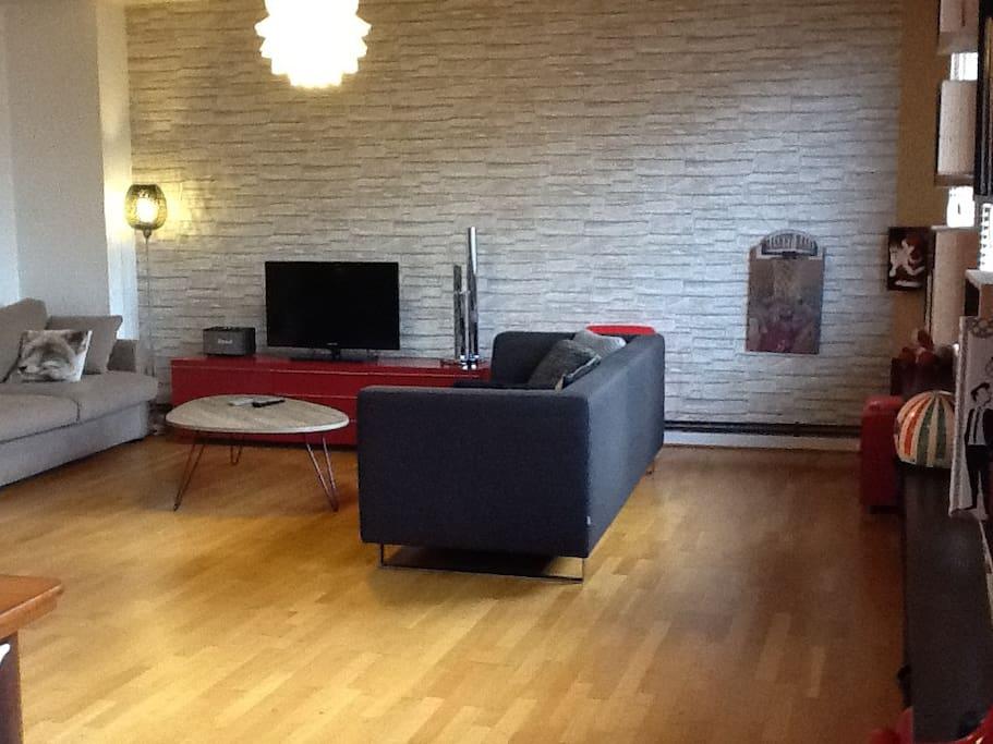 Living 35 m2 2 canapés dont un canapé lit (matelas bultex