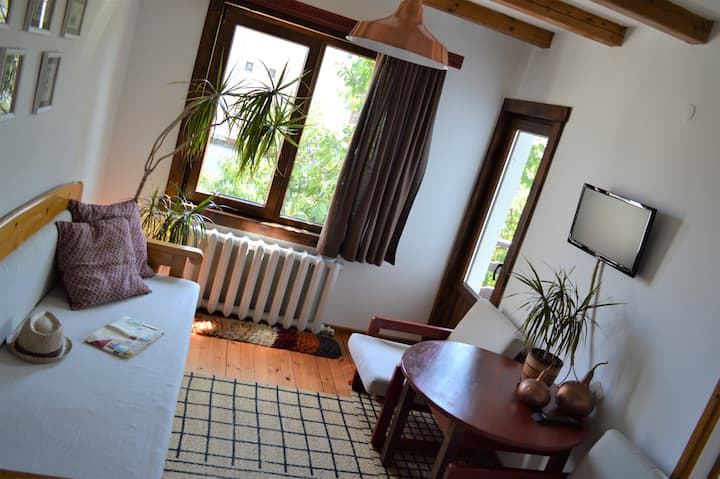 Double Room * Sema Guest House * Bansko