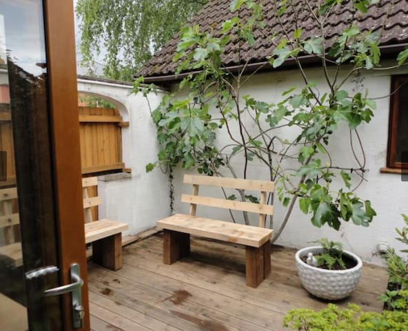 Court Yard Garden (access off lounge)