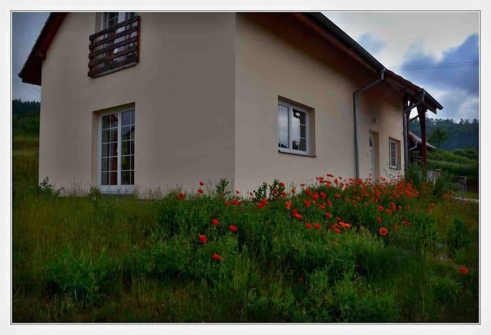 Grotere huis in Plasy, Tsjechie