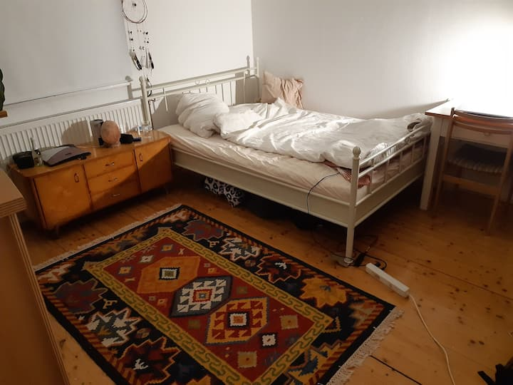 Privates Zimmer, in Altstadt + Donaublick