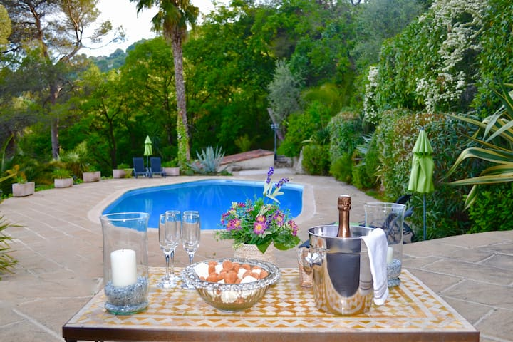 Glistening views minutes from Nice - Gattières - Villa