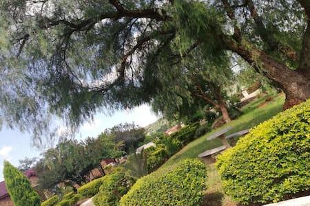 The Hills - Lobethal, gaPhaahla