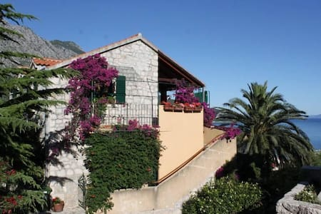 Two bedroom apartment with balcony and sea view Igrane, Makarska (A-2660-a) - Igrane - Byt