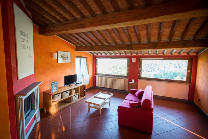 Experience in Tuscany - house with pool
