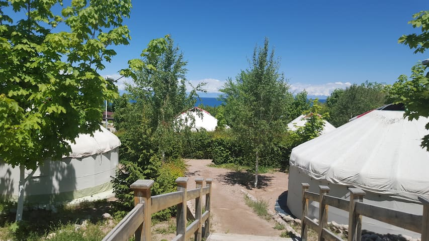 Отдых, дайвинг на Иссык-куле - Tamga - Yurt