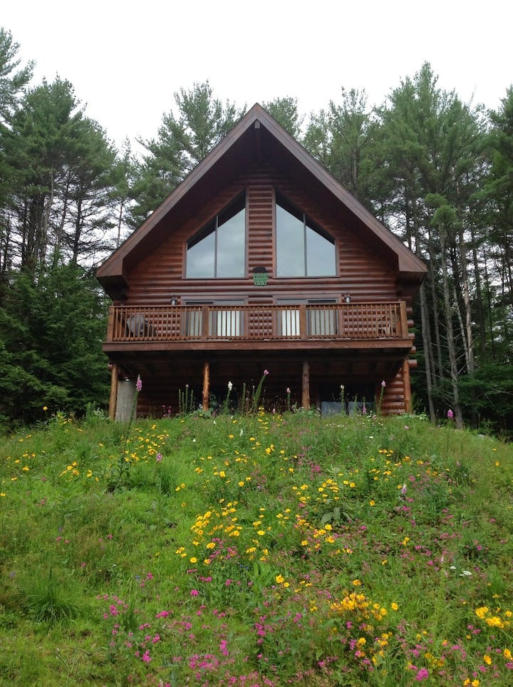 Log cabin in Adirondacks