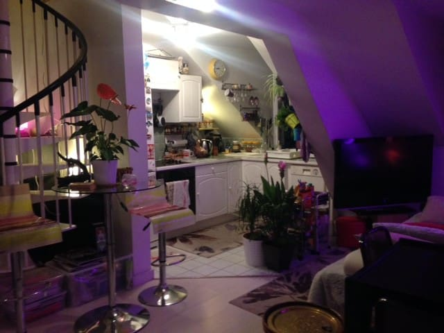 Lovely duplex apartment at 10 mn from Paris - Saint-Maurice - Daire