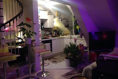 Lovely duplex apartment at 10 mn from Paris - Saint-Maurice