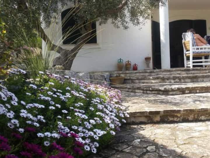 Villa Azzurra - casa vacanze