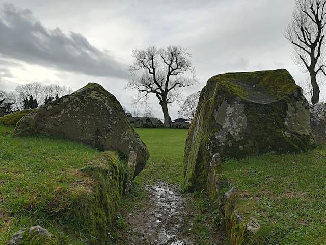 Stone circle @ Lough Gur Co Limerick