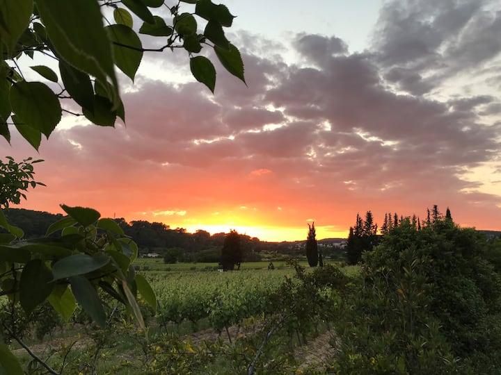 L'Esperluette, un lieu pour vos vacances vertes