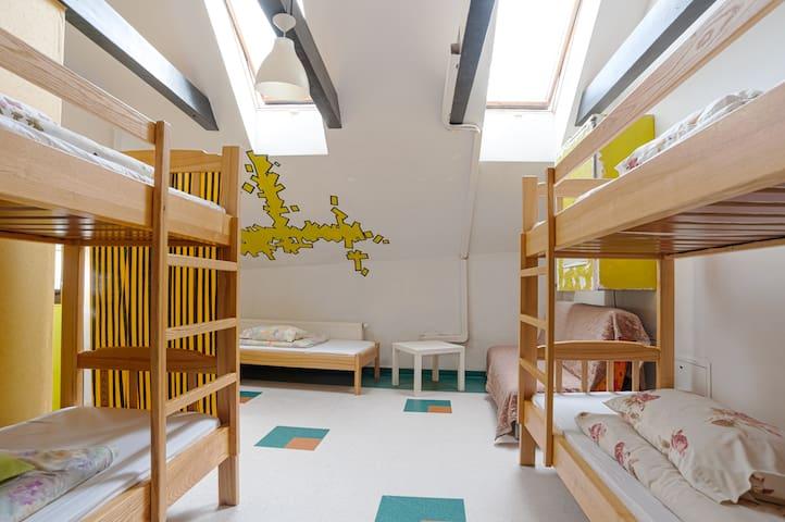 Cozy 6 beds mixed dorm
