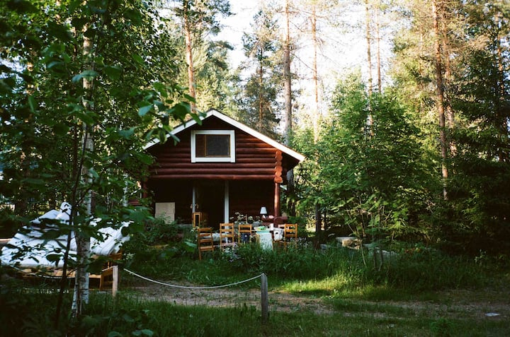 Tiny forest cabin Orava