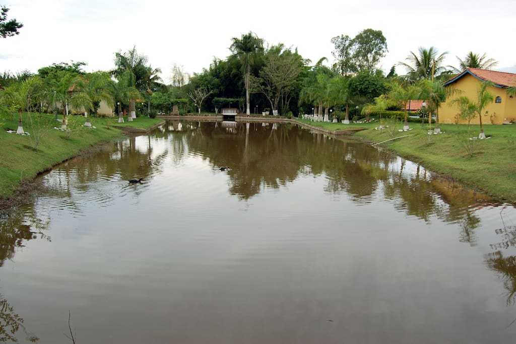 Lago para pesca