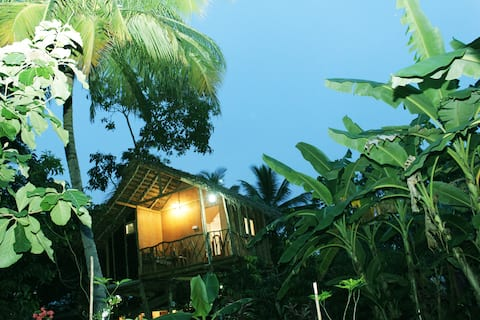Gemi Gedara and Himala Tree House