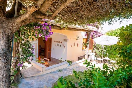 Villetta Giardino/Summer House with Garden- Budoni