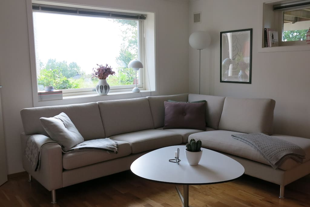 Living room with a comfy couch