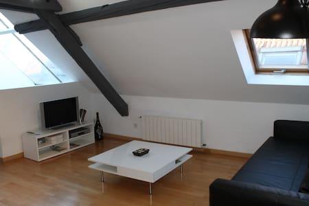Appartement tout équipé Metz Centre - Metz - Wohnung