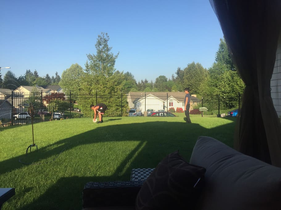 View around the front yard