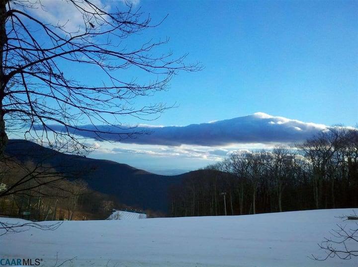 Ski In & Ski Out Condo - Heart of Wintergreen