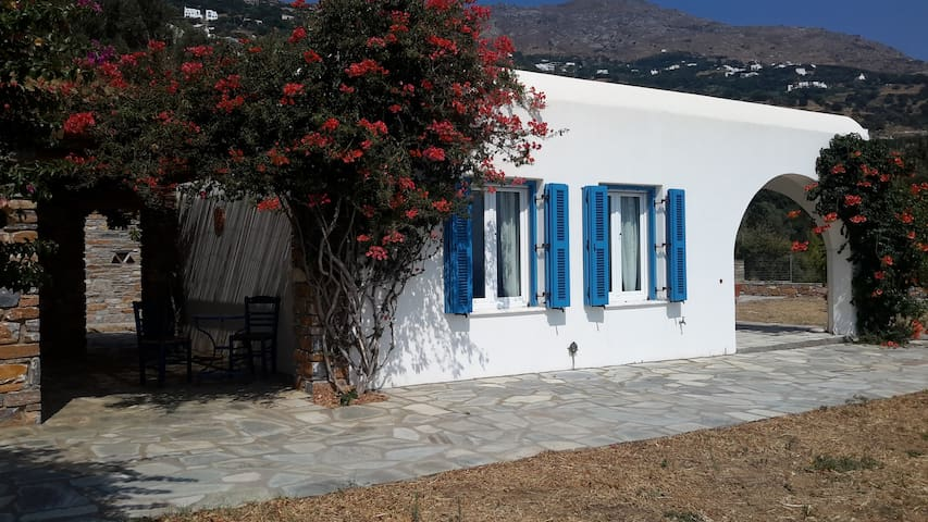 Capensia Lodge at Pelagaia Villas - Andros - Villa
