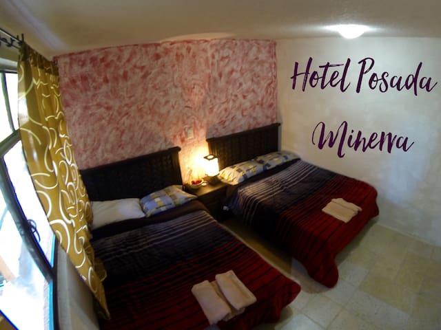 Hotel Posada Minerva