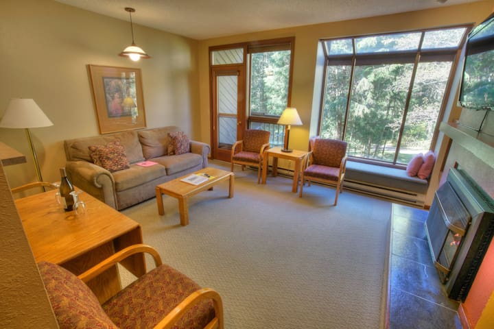 Living Room with American Leather Queen Sofa Bed, river & mountain views, propane fireplace.