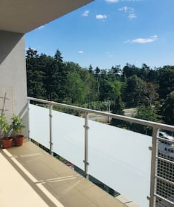 New Apartment with big terrace and park view