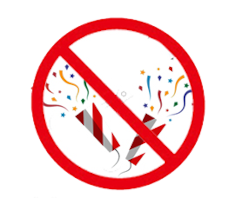 NO PARTIES ARE PERMITTED. TO VIOLATE THIS RULE, WILL OCCASION TO BE EVICTED IMMEDIATELY, WITH THE POLICE.